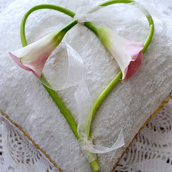 Blumen Odenthal Hochzeitsfloristik