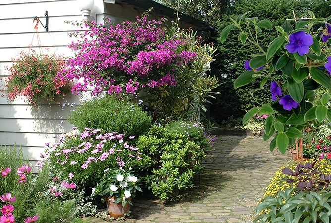 Blumen Odenthal Außenbepflanzung