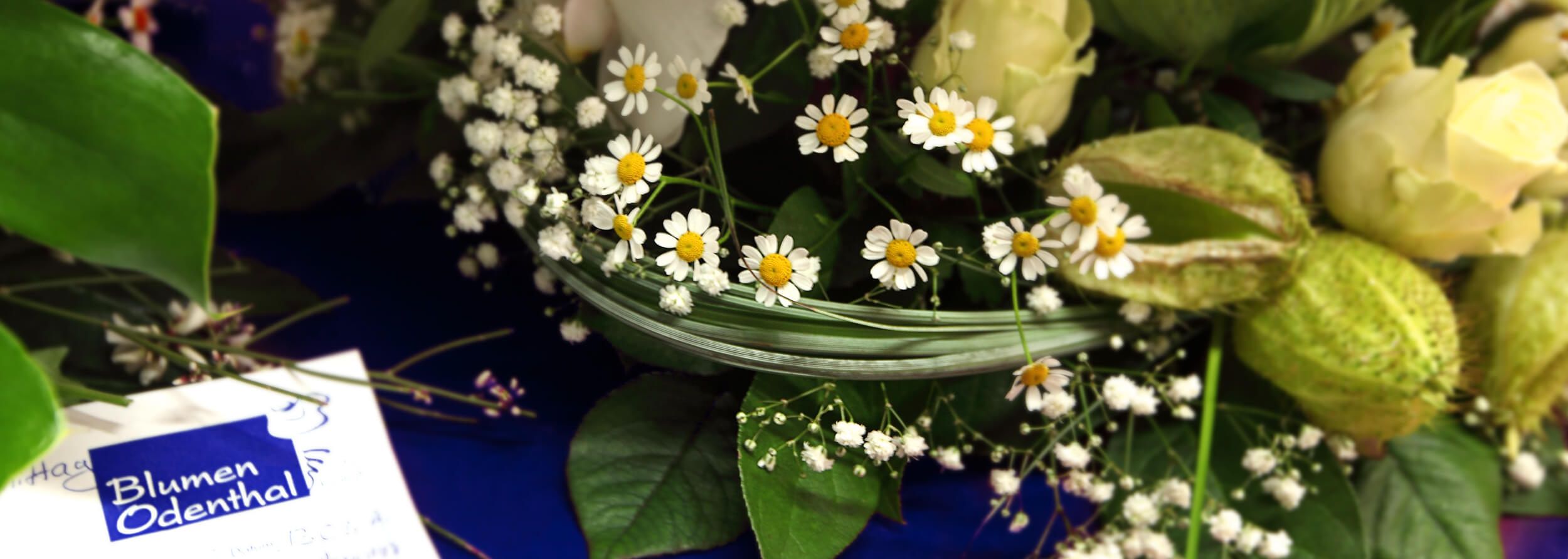 Blumen Odenthal - 5 Sterne Florist Troisdorf